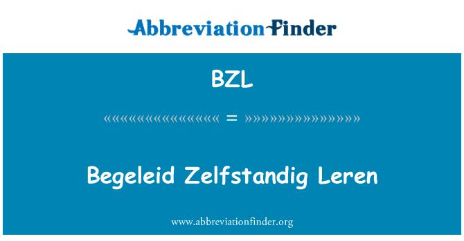 BZL: Begeleid Zelfstandig Leren