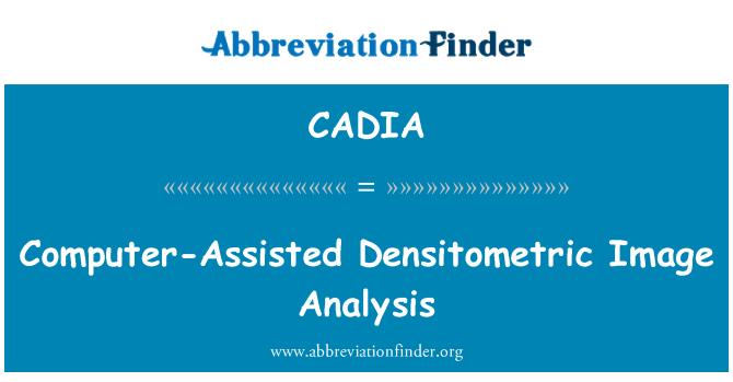 CADIA: Análisis densitométrico de imagen asistida por ordenador
