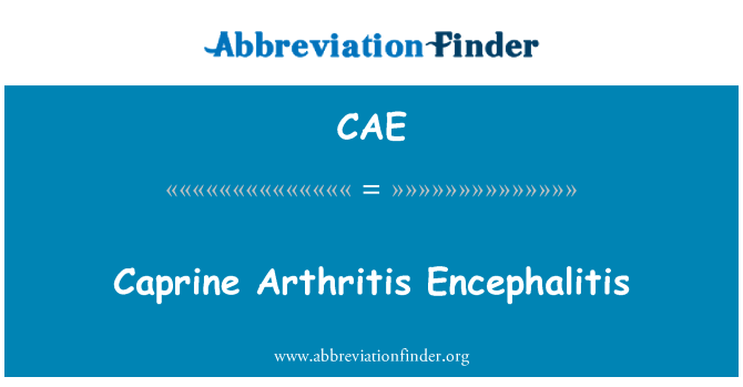 CAE: Caprine Arthritis Encephalitis