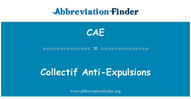 CAE: Colectivo contra las expulsiones