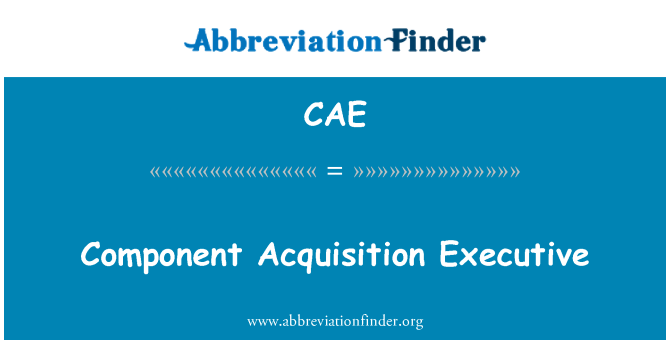 CAE: Component Acquisition Executive