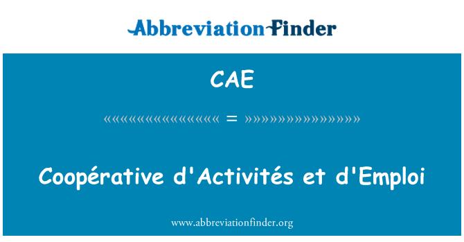 CAE: Coopérative d'Activités et empleo