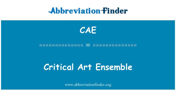 CAE: Critical Art Ensemble