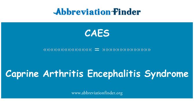 CAES: Caprine Arthritis Encephalitis Syndrome