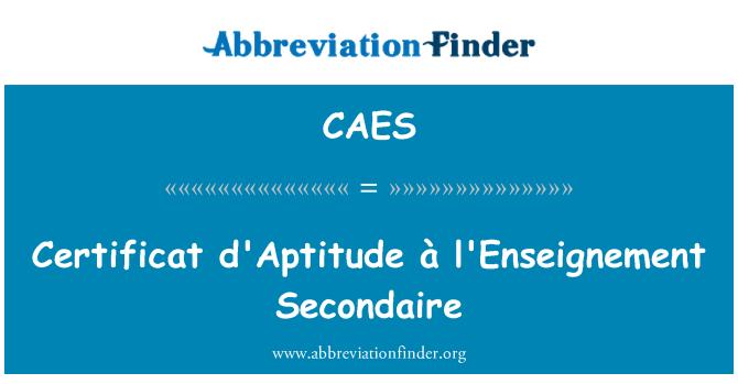 CAES: Certificat d'Aptitude à l'Enseignement Secondaire