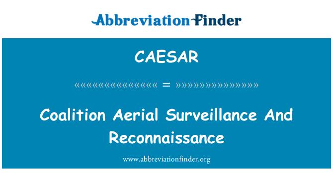 CAESAR: Coalition Aerial Surveillance And Reconnaissance