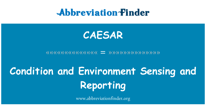 CAESAR: Condition and Environment Sensing and Reporting