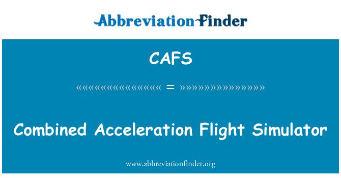CAFS: Combined Acceleration Flight Simulator