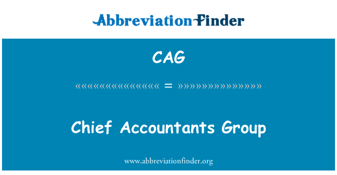 CAG: Chief Accountants Group