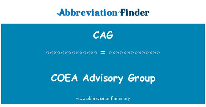 CAG: Grupo Asesor de COEA