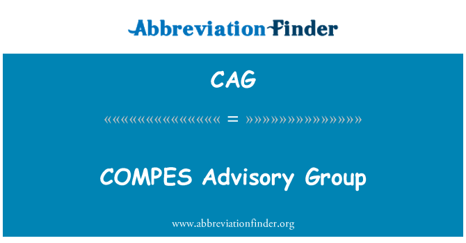 CAG: COMPES Advisory Group