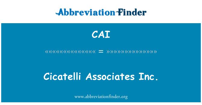 CAI: Cicatelli Associates Inc.