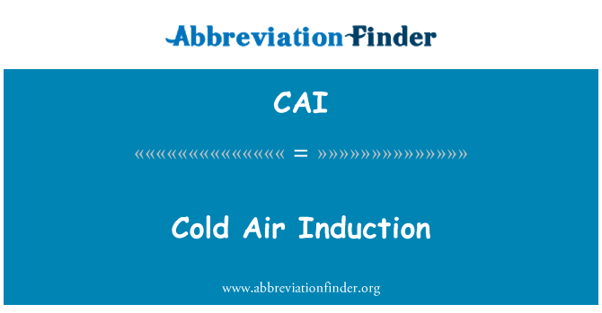 CAI: Cold Air Induction
