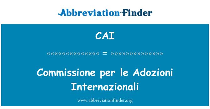 CAI: Commissione per le Adozioni Internazionali