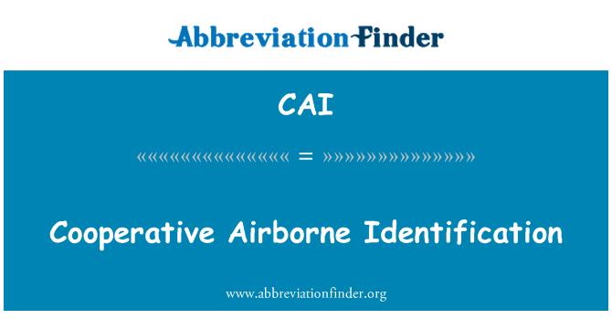 CAI: Cooperative Airborne Identification