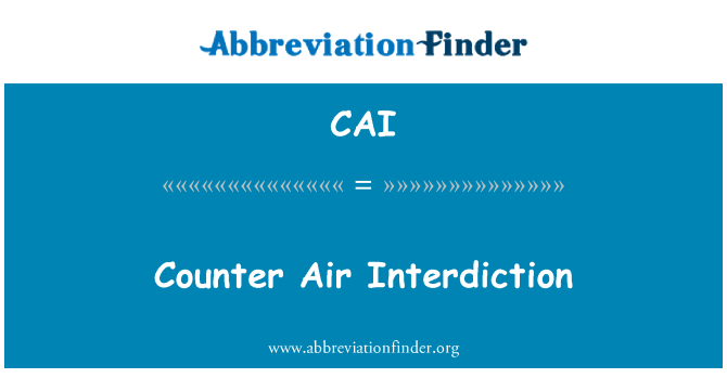 CAI: Counter Air Interdiction