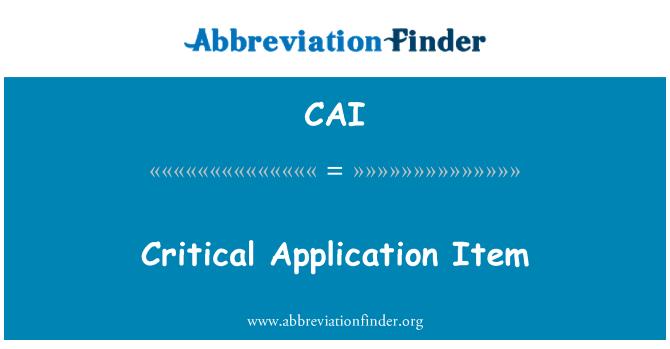 CAI: Critical Application Item