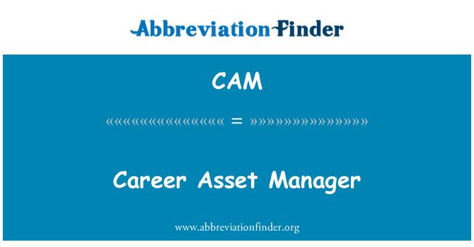 CAM: Career Asset Manager