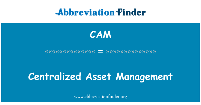CAM: Centralized Asset Management