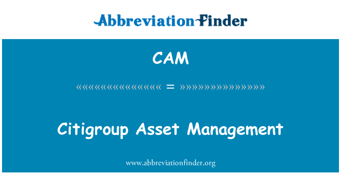 CAM: Citigroup Asset Management