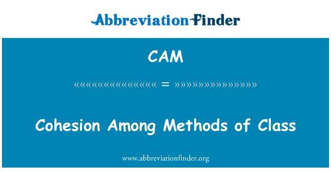 CAM: Cohesion Among Methods of Class