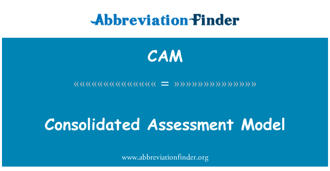 CAM: Consolidated Assessment Model