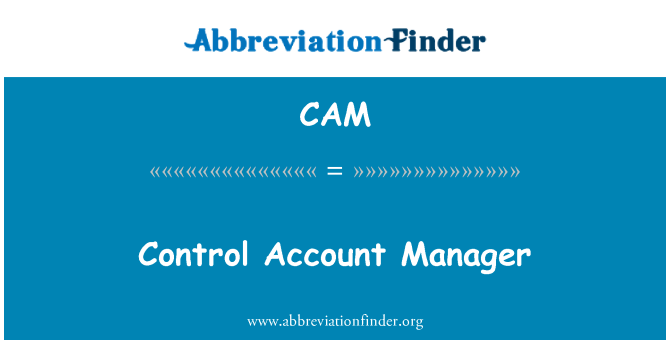 CAM: Control Account Manager