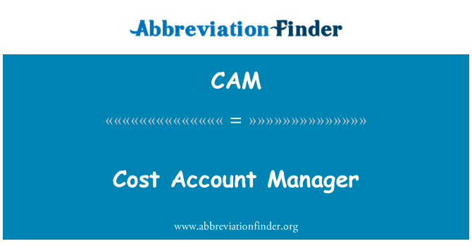 CAM: Cost Account Manager