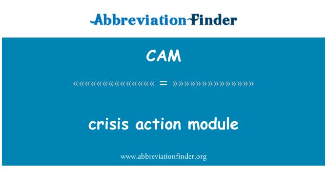 CAM: crisis action module