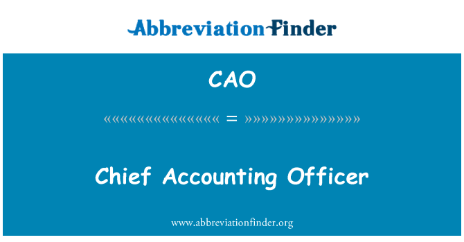CAO: Chief Accounting Officer