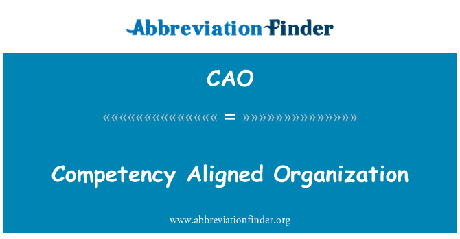 CAO: Competency Aligned Organization