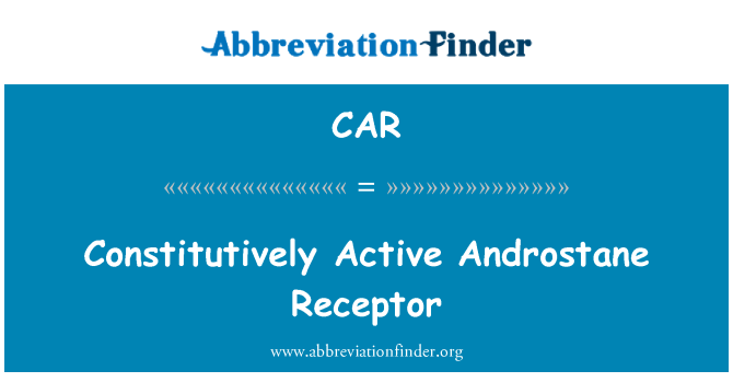 CAR: Constitutively Active Androstane Receptor