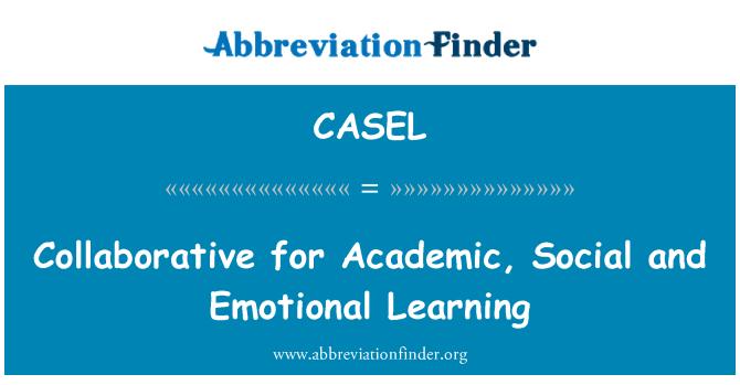 CASEL: Collaborazione per l'apprendimento accademico, sociale ed emotivo