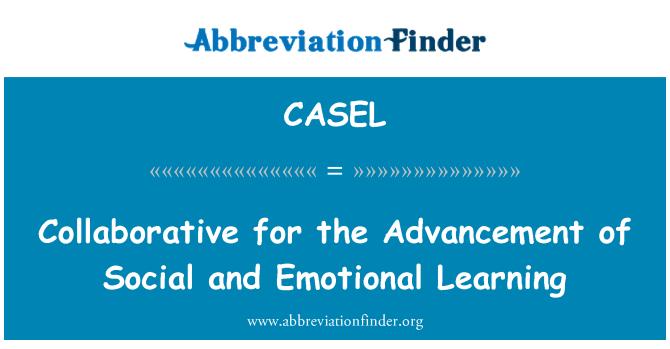 CASEL: Colaboración para la promoción de aprendizaje Social y emocional