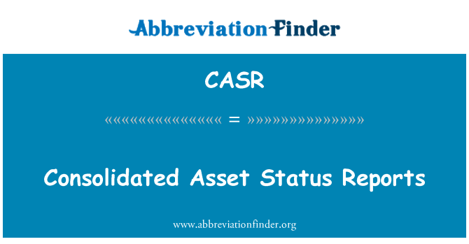 CASR: Consolidated Asset Status Reports