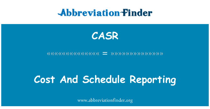 CASR: Cost And Schedule Reporting