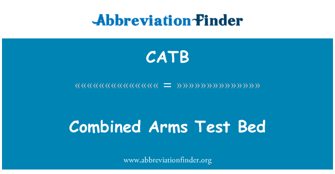 CATB: Combined Arms Test Bed