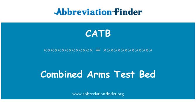 CATB: Müşterek kuvvet Test yatağı