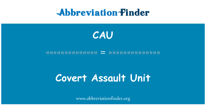 CAU: Unidad de asalto encubierta