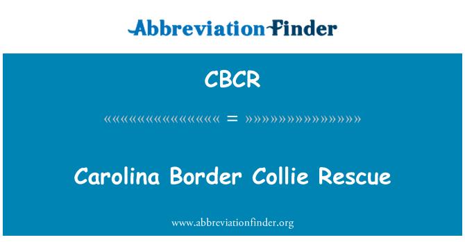 CBCR: Carolina Border Collie Rescue