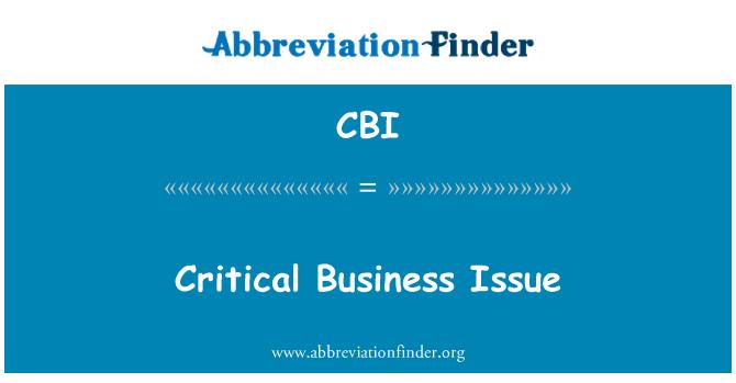 CBI: Cuestión crítica para el negocio