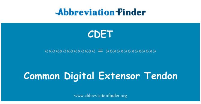 CDET: Common Digital Extensor Tendon