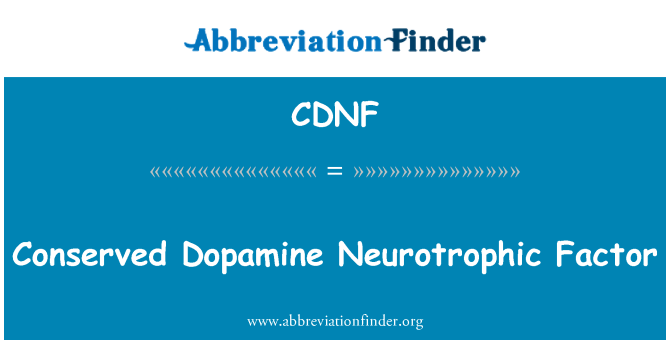 CDNF: Conserved Dopamine Neurotrophic Factor