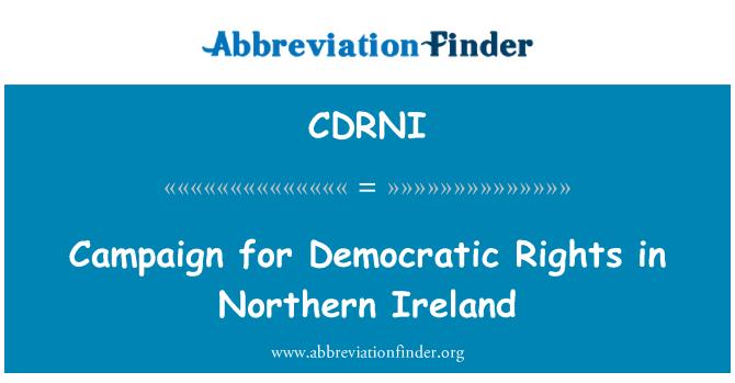 CDRNI: Campaign for Democratic Rights in Northern Ireland