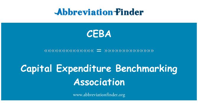 CEBA: Capital Expenditure Benchmarking Association