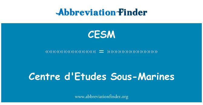CESM: Centre d ' Etudes Sous-Marines