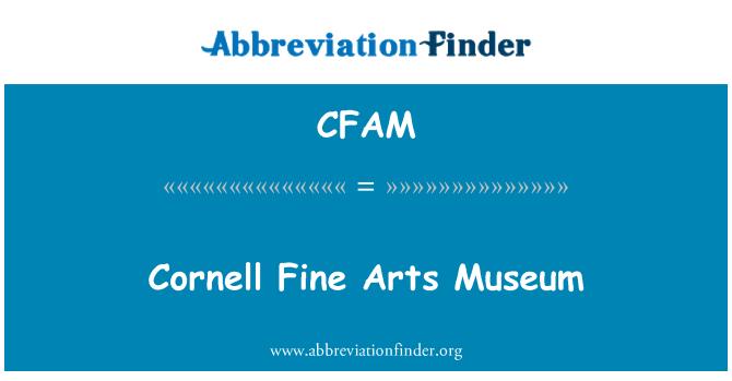 CFAM: Cornell Fine Arts Museum