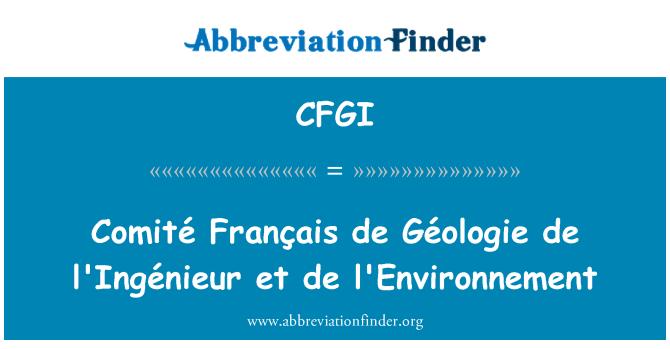CFGI: Comité Français de Géologie de l'Ingénieur et de l ' environnement