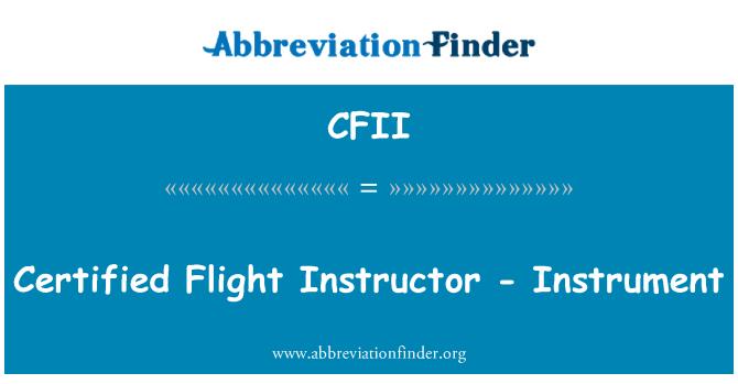CFII: Uçuş öğretmeni - enstrüman sertifikalı
