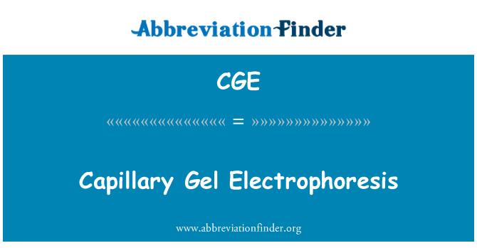 CGE: Capillary Gel Electrophoresis